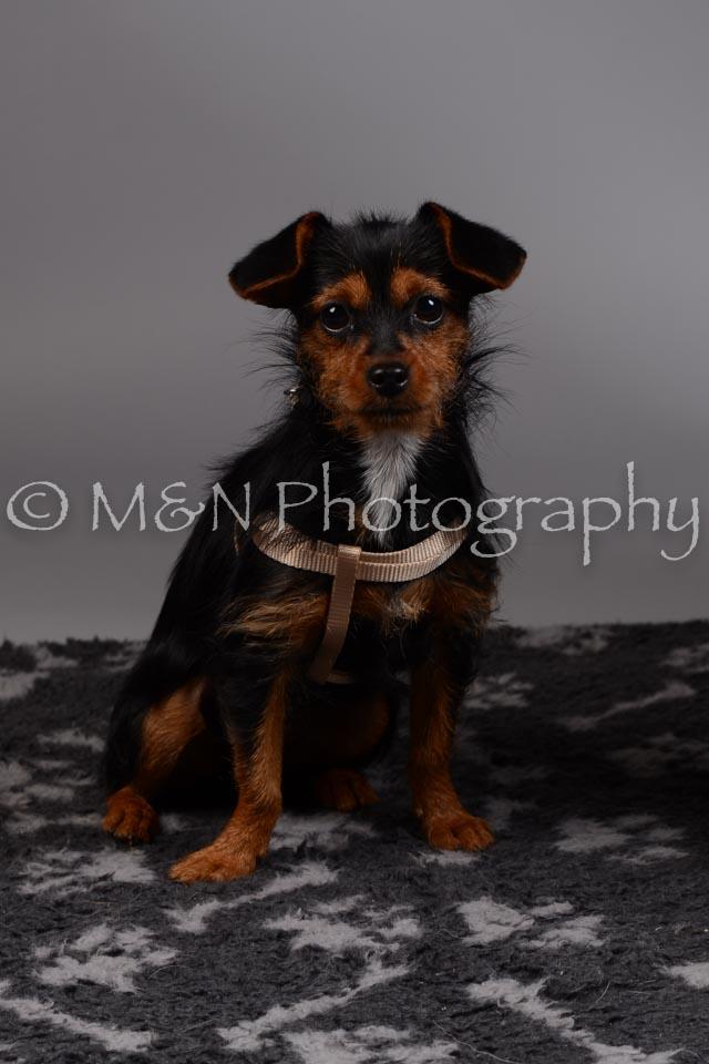 M&N Photography -DSC_1497