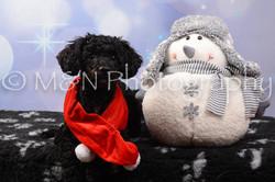 M&N Photography -DSC_6884