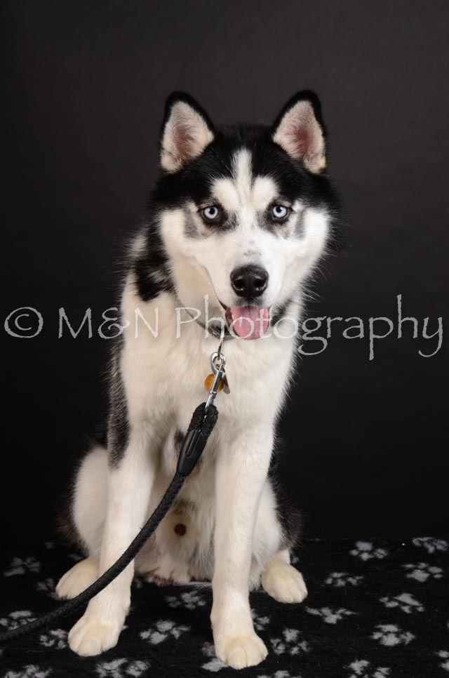 M&N Photography -DSC_5868