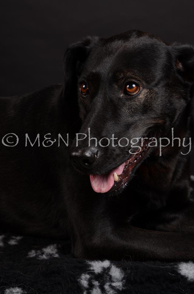 M&N Photography -DSC_5787