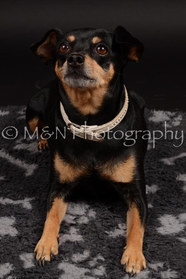 M&N Photography -DSC_9658