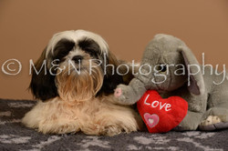 M&N Photography -_SNB0496