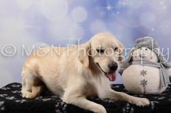 M&N Photography -DSC_6658