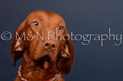 M&N Photography -DSC_4539