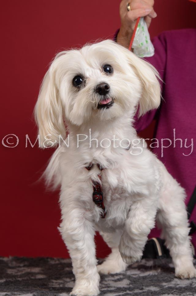 M&N Photography -DSC_3637