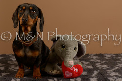 M&N Photography -_SNB0542