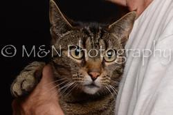 M&N Photography -DSC_9926