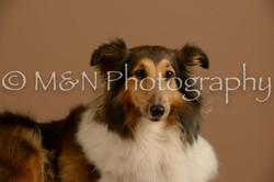M&N Photography -_SNB0732
