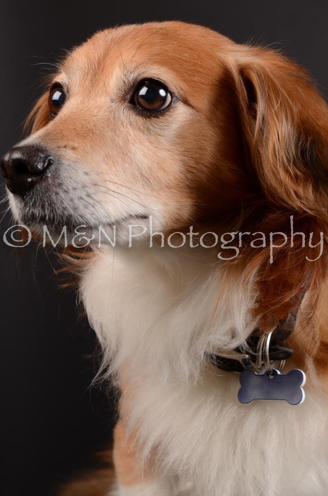 M&N Photography -DSC_5447