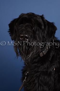 M&N Photography -DSC_4972