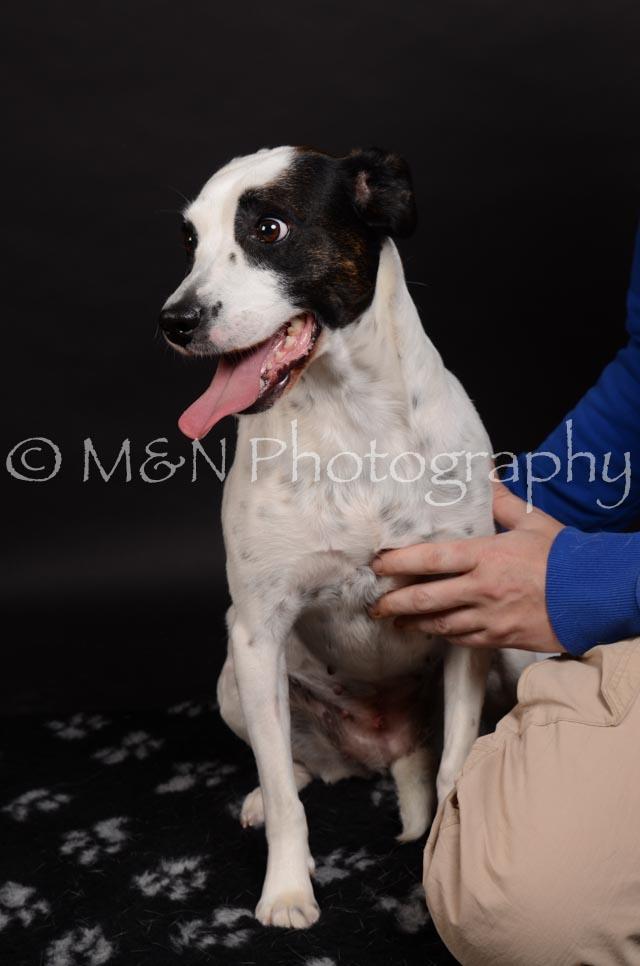M&N Photography -DSC_5830