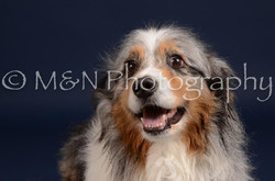 M&N Photography -DSC_0240