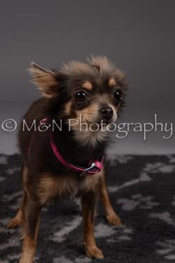 M&N Photography -DSC_2242