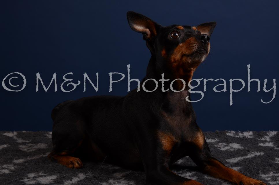 M&N Photography -DSC_3864