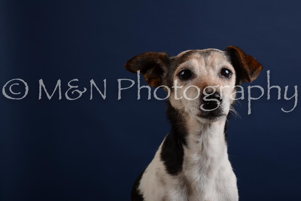 M&N Photography -DSC_3811