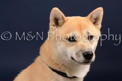 M&N Photography -DSC_0657