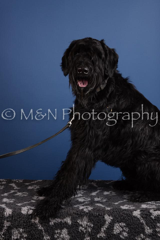 M&N Photography -DSC_4970
