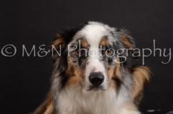 M&N Photography -DSC_5415