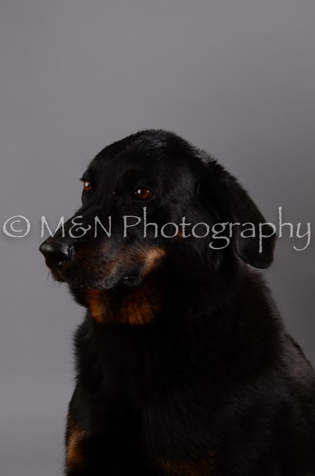 M&N Photography -DSC_2786