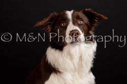 M&N Photography -DSC_5882