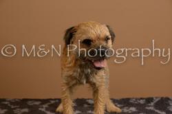 M&N Photography -_SNB0520