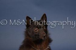 M&N Photography -DSC_3912