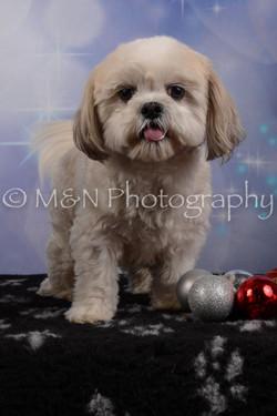 M&N Photography -DSC_6494