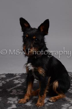 M&N Photography -DSC_2970