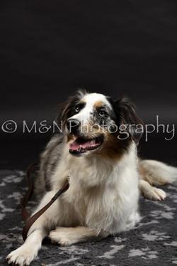 M&N Photography -DSC_2467