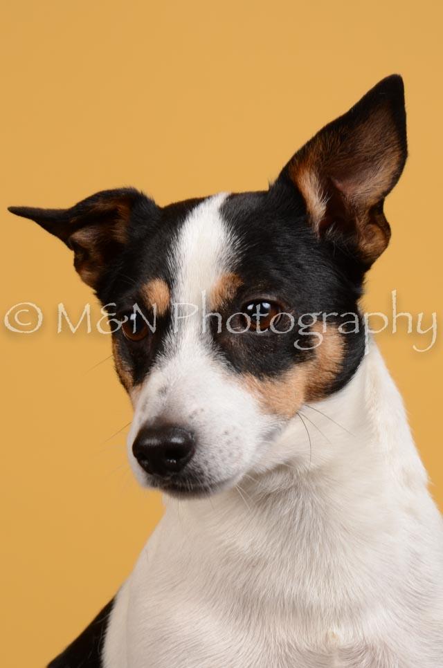 M&N Photography -DSC_4521