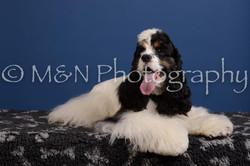 M&N Photography -DSC_4927