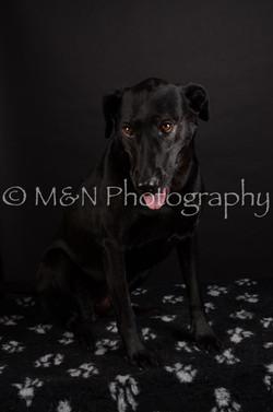 M&N Photography -DSC_5791