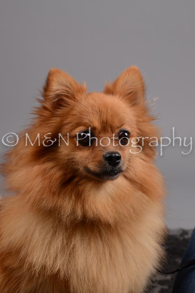 M&N Photography -DSC_2523