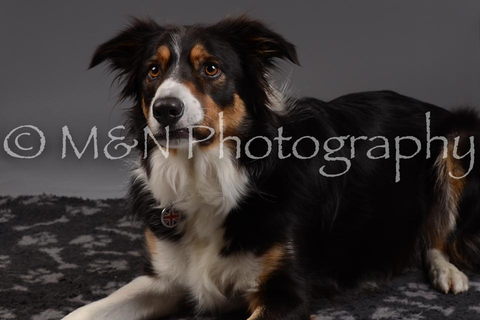 M&N Photography -DSC_2056