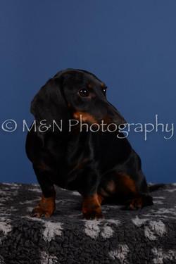 M&N Photography -DSC_5362