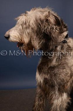 M&N Photography -DSC_4435