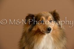 M&N Photography -_SNB0702