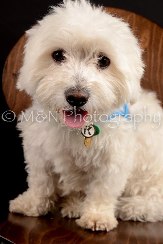 M&N Photography -DSC_9786
