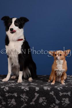M&N Photography -DSC_5303