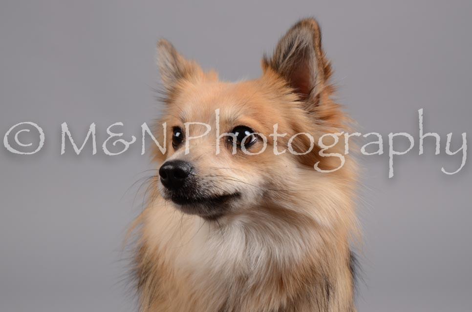 M&N Photography -DSC_2721