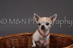 M&N Photography -DSC_2183
