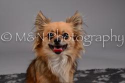 M&N Photography -DSC_1789