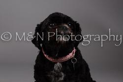 M&N Photography -DSC_2333