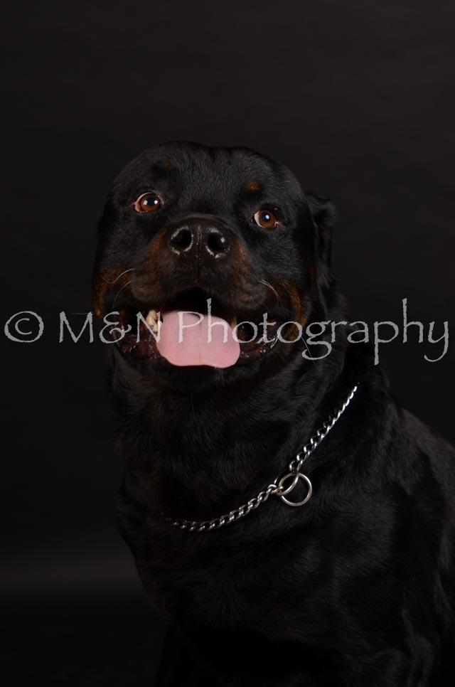 M&N Photography -DSC_5767