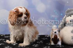 M&N Photography -DSC_6944