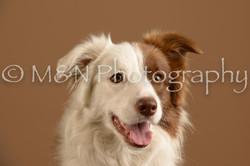 M&N Photography -_SNB0629
