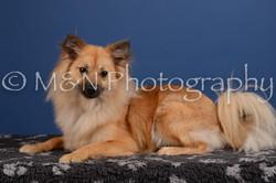 M&N Photography -DSC_5022