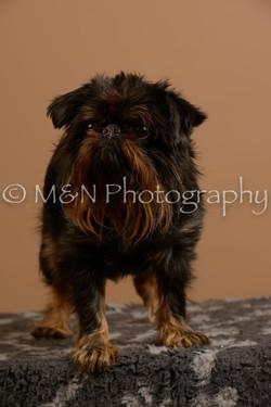 M&N Photography -_SNB0914