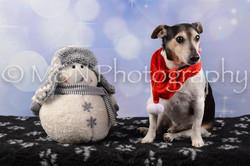 M&N Photography -DSC_6648