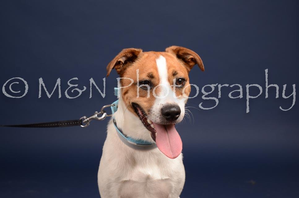 M&N Photography -DSC_0499